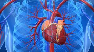 çalışan kalp ameliyatı