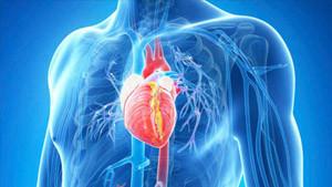 koroner arter hastalığı komplikasyonları