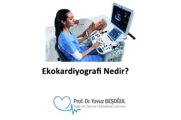 ekokardiyografi neden önemlidir